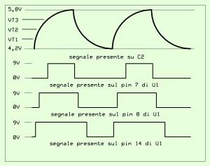 TZ007 grafico